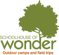 Schoolhouse of Wonder