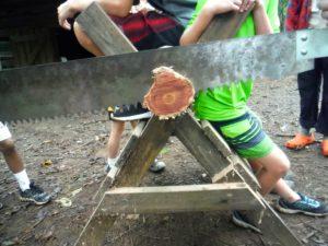 Lumberjack! Photo Gallery 9/26/16 – 9/30/16