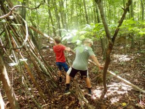 Woodland Creators Photo Gallery